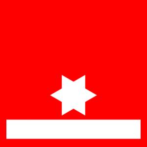 dienstgrad_lm